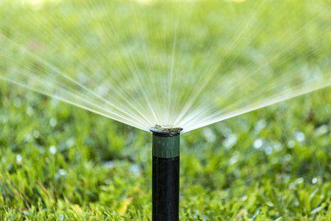 Irrigazione giardino a Cerveteri
