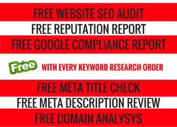 7 Essential  SEO Reports