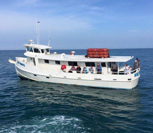 Deep Sea Fishing Port Richey Fl Miss Virginia