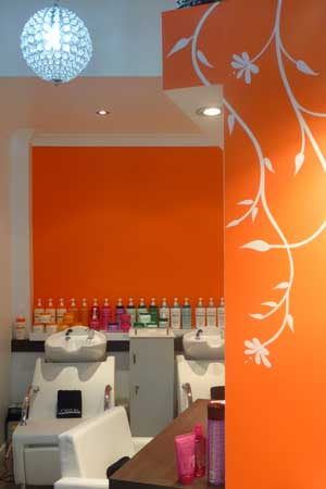 l'oreal hair styling salon in airlie