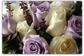 For beautiful and unique flowers for all special occasions in Derry, call Rossdowney Flowers on 02871 345 637