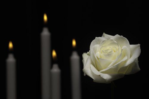 rosa bianca con candele accese