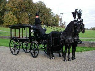 Horse drawn funeral carriage with a man all dressed in black and two black horses