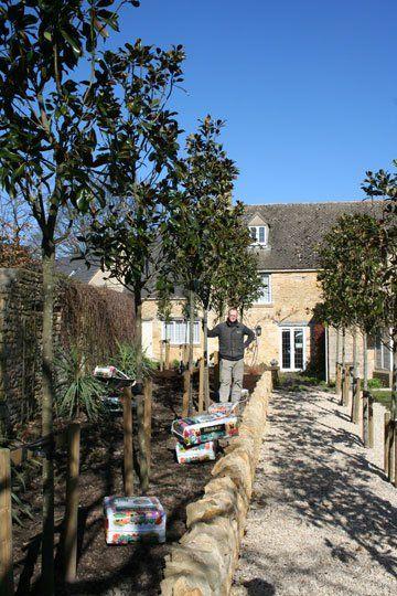 plants for your garden - Evesham - Castle Acre - garden