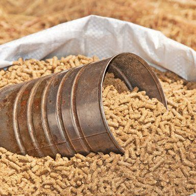 Animal feed, Fencing supplies, fence panels, fence posts, chain link, closeboard, Swansea