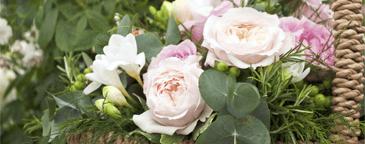 promozione fiori