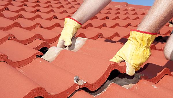 due mani con dei guanti gialli che posizionano delle tegole su un tetto