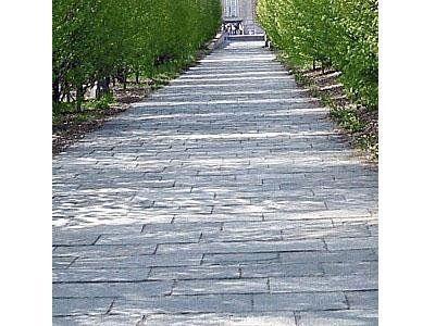 sentiero in pietra