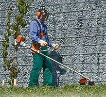 eliminazione erbe infestanti