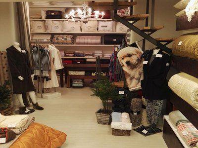 vista del negozio con biancheria e oggettistica di arredamento per la casa
