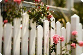 Gates - Kingston, London - Cambridge Fencing - white fence