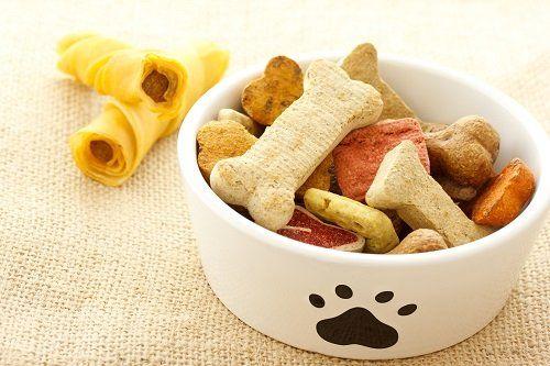 Ciotola con biscotti e snack per cani