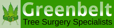 Greenbelt tree surgery specialists