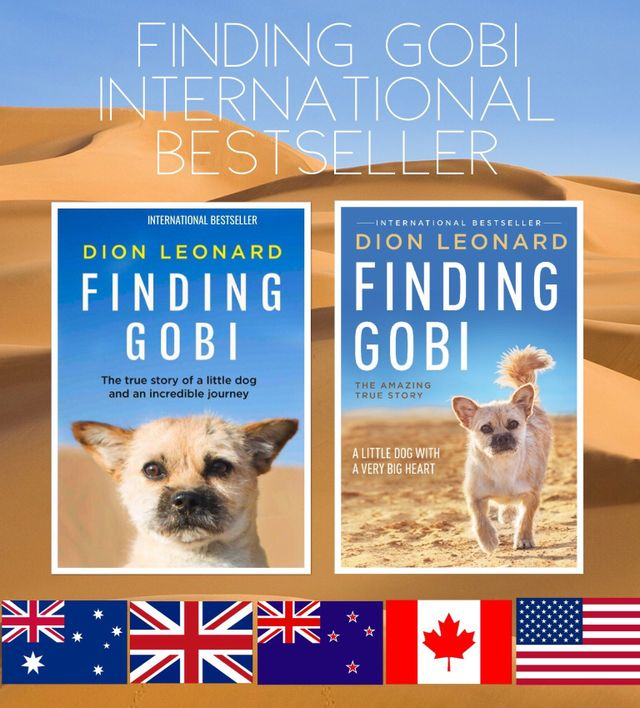 Finding Gobi, Dion Leonard, Gobi the Dog, Finding Gobi Book, Young Adult Version, Paperback, Hardback, Children's Picture Book