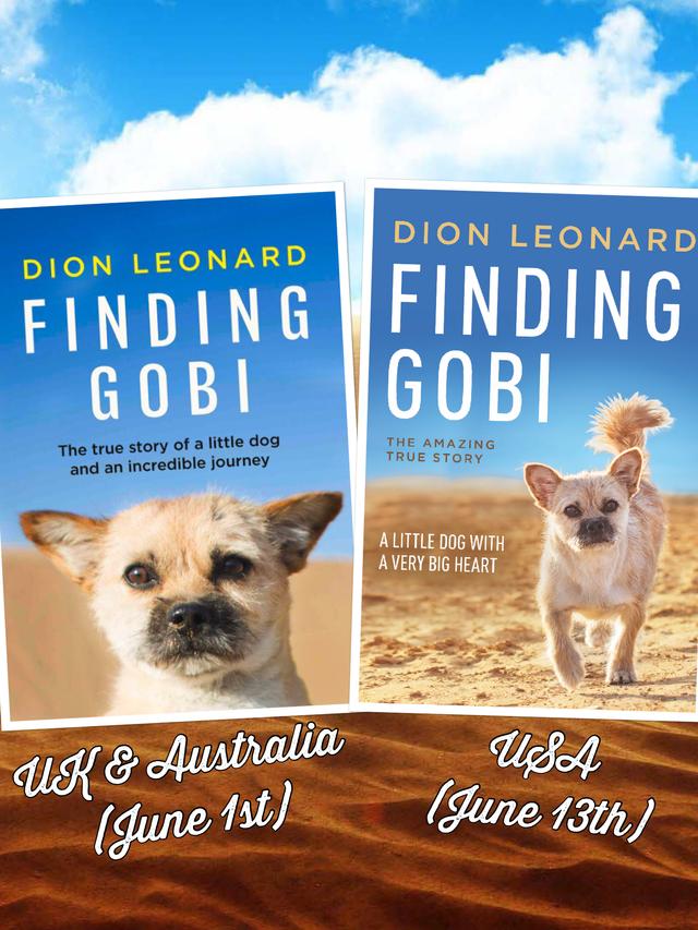 Finding Gobi Dion Leonard Hardback Paperback Book Cover