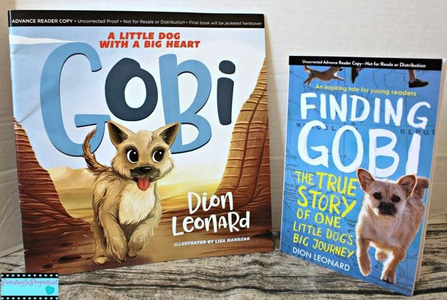 Dion Leonard, Finding Gobi, Children's Picture Book, One Dogs Little Journey, Little Dog with a big heart