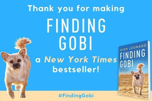 Dion Leonard, Finding Gobi, New York Times, Bestseller List
