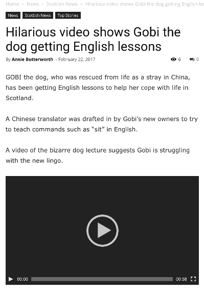 Dion Leonard, Deadline News, Gobi the Dog, Chinese Dog