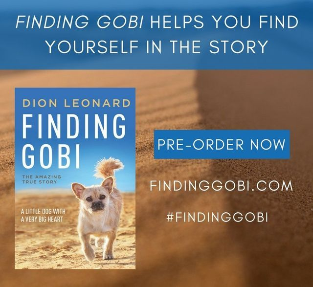 Finding Gobi, Dion Leonard, Gobi the Dog, Finding Gobi Book