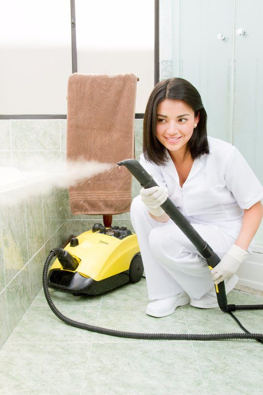 Vapor Cleaning Chicago Steam Home Cleaning Services In Chicago - Bathroom cleaning lady