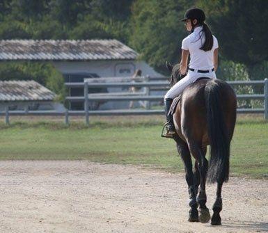 pensione per cavalli, salto ostacoli, scuderia didattica per scuole