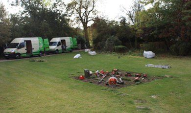 Garden clearance - Billericay - Down 2 Earth Garden Services & Maintenance - Maintenance
