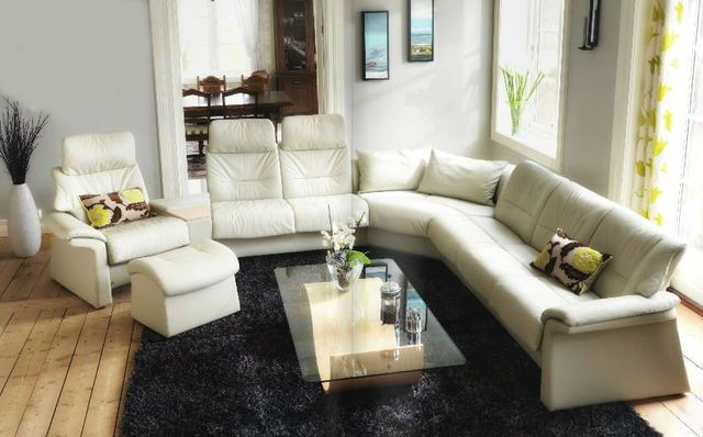 Leather chair and sectional couch
