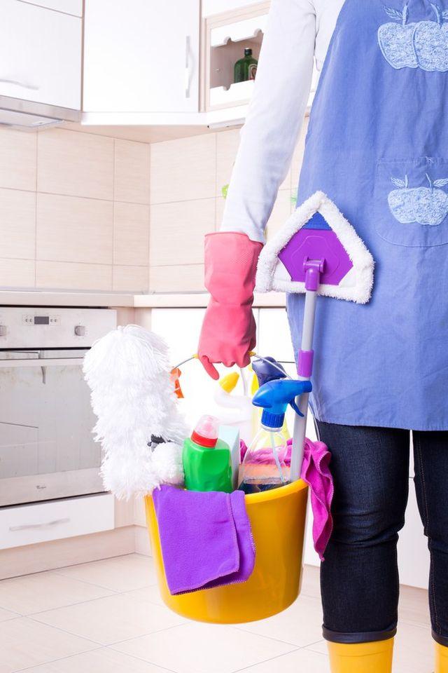 haushaltshilfe putzhilfe putzfrau reinigungskraft putzkraft. Black Bedroom Furniture Sets. Home Design Ideas