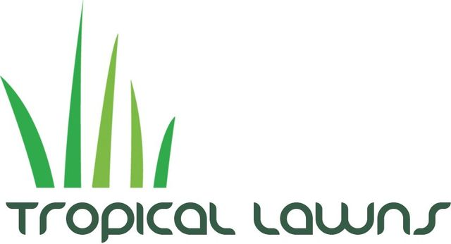 Turf Specialists in Cairns | Tropical Lawns