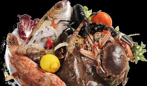 Piatti pesce fresco
