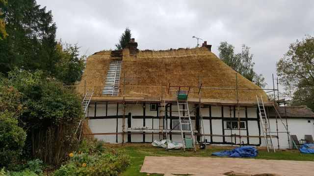 A thatched roof being patched
