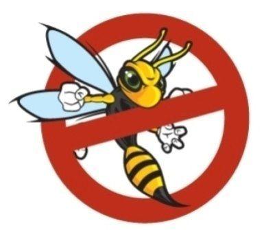 disinfestazione di vespe e calabroni