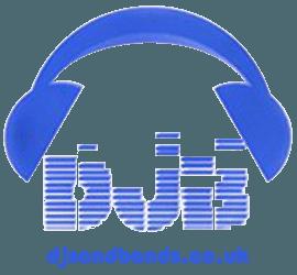 DJ Sand Bands logo