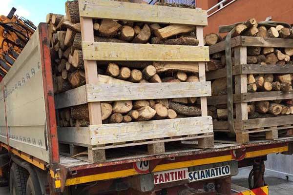 Trasporto legna a Brindisi
