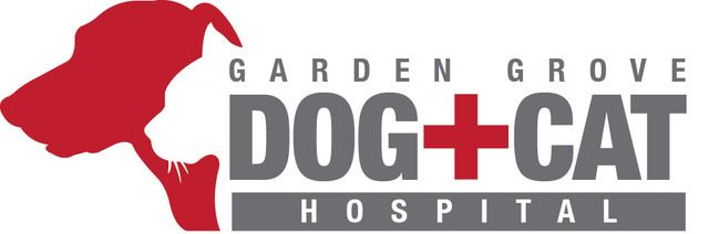 Garden Grove Dog And Cat Hospital Reviews Garden Ftempo