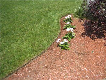 Landscaping-Lawns