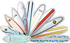 Surfboards All Types